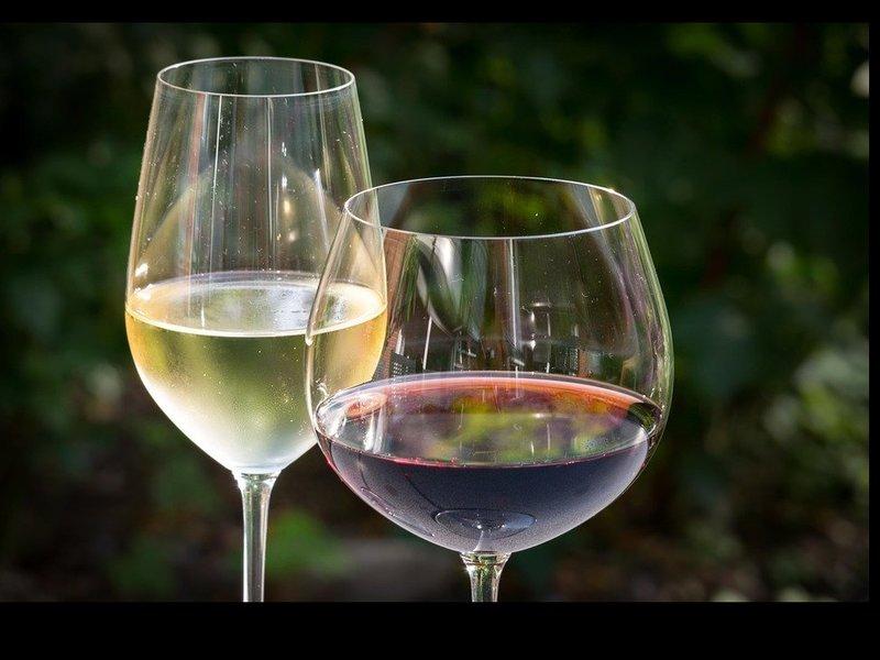 現役ソムリエと一緒に学ぶ超入門ワインセミナーの画像