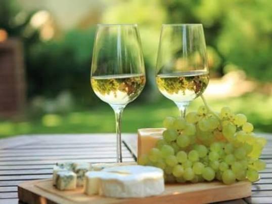 【初級】楽しく白ワインについて学ぶセミナーの画像