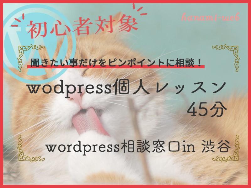【初心者歓迎】wordpress個人レッスンお悩み45分解決!渋谷の画像