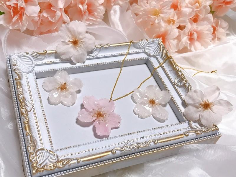 本物の桜の花で作る♪世界にひとつだけのオリジナルアクセサリーの画像
