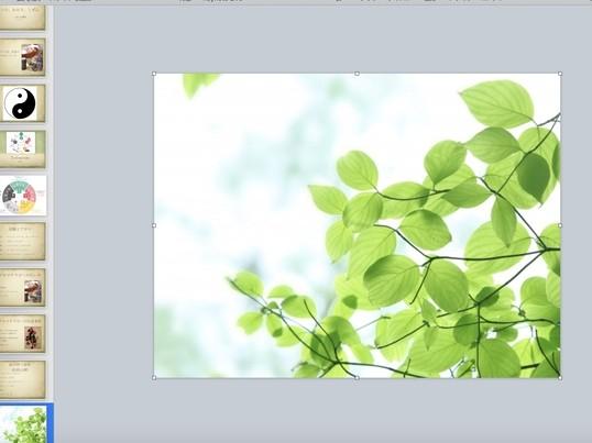 アロマ、色彩、漢方の3つのアプローチで自然について知ろう!の画像