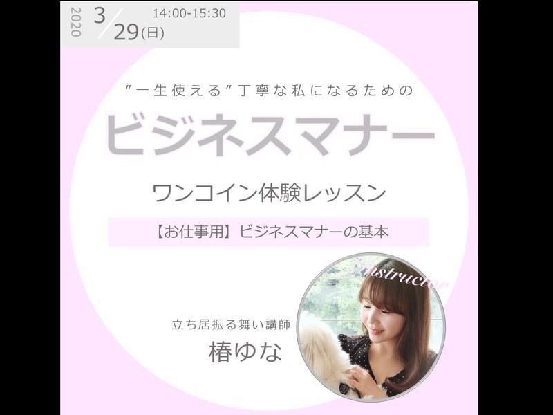 【ワンコイン体験レッスン】03/29(日) ビジネスマナーの画像