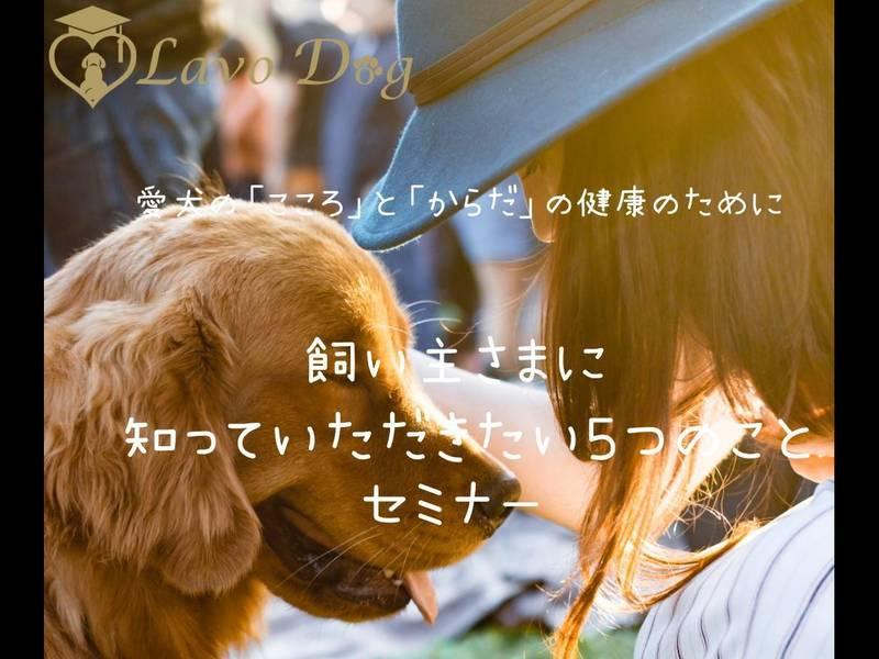 『飼い主が知っておきたい愛犬の健康をまもるおうちケアのポイント』の画像