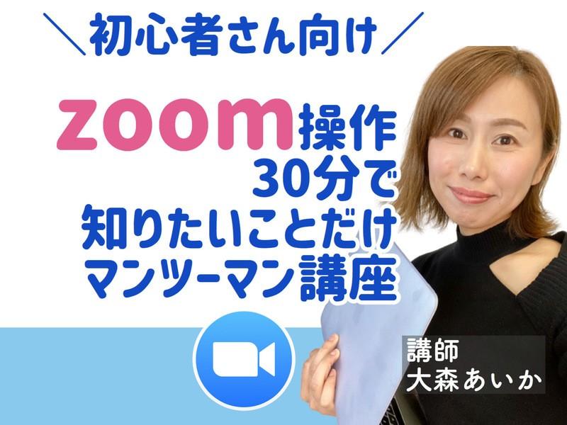 オンライン|30分でZOOMへの不安がなくなるマンツーマン講座の画像