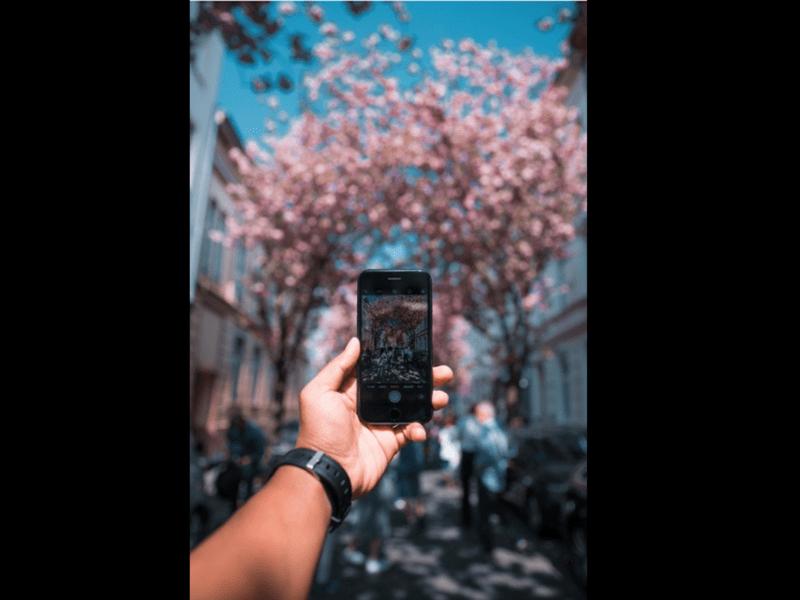【スマホで!】那覇散歩しながら2時間でカメラの基本を身につけよう!の画像