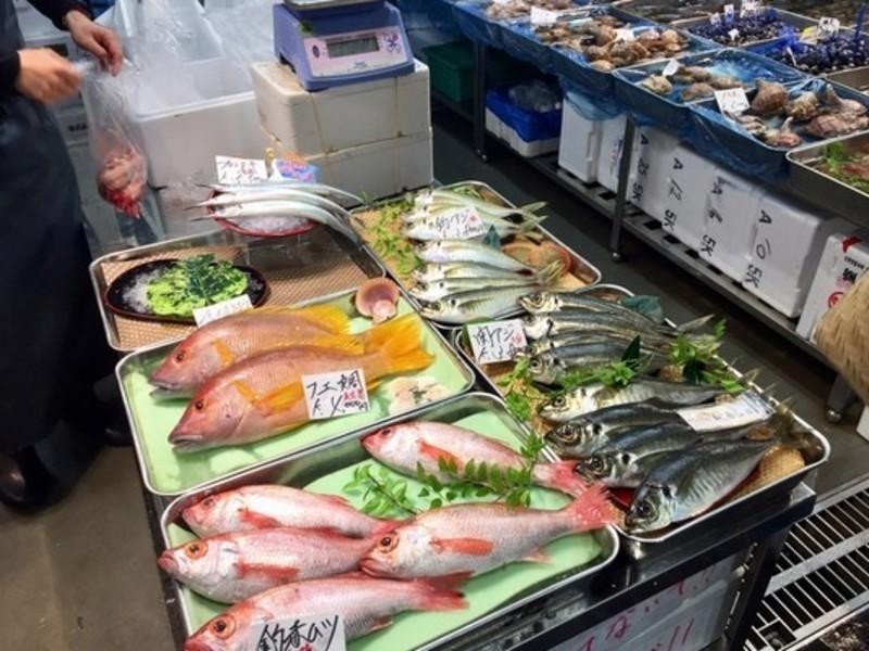 【ゆとり版】豊洲市場・仲卸フロアでのお買い物+魚さばきと寿司にぎりの画像
