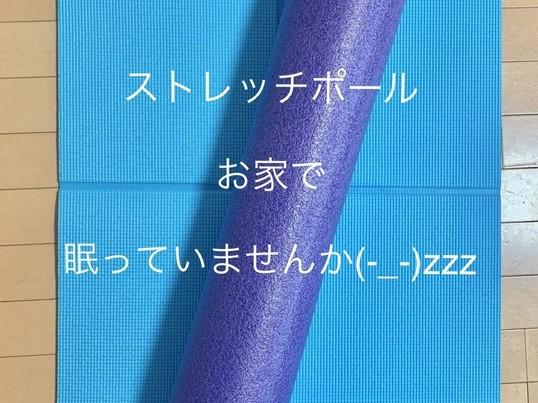 【オンライン】ストレッチポールで筋膜リリース&ピラティス☆60分の画像