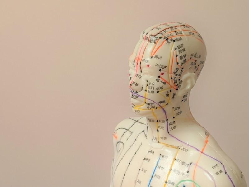 【オンライン開催】東洋医学のキホンと体質分析マンツーマン講座の画像