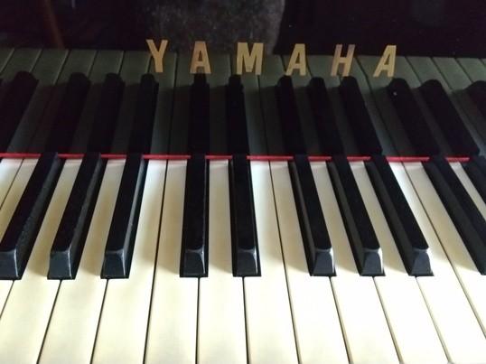 Skypeでピアノレッスン♪の画像
