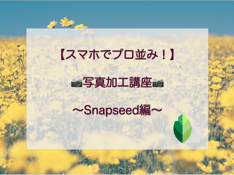【スマホでプロ並み!】写真加工講座〜Snapseed編〜の画像