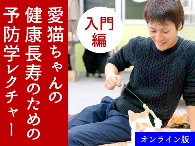 【オンライン版】愛猫ちゃん健康長寿の予防学レクチャー【入門編】の画像