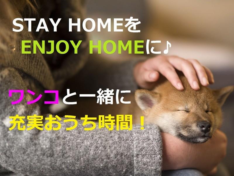 【オンライン】愛犬と充実おうち時間♪外出自粛でENJOY HOMEの画像
