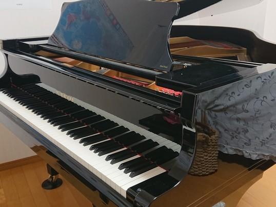 こどものはじめてピアノ体験レッスンの画像