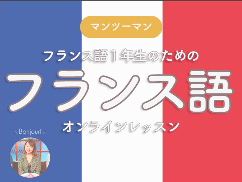 【マンツーマン】フランス語一年生のためのオンラインレッスン致しますの画像