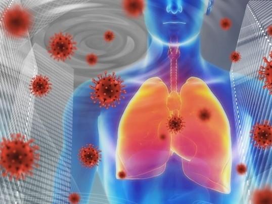 免疫強化・自分の身体を見つめよう❗️の画像