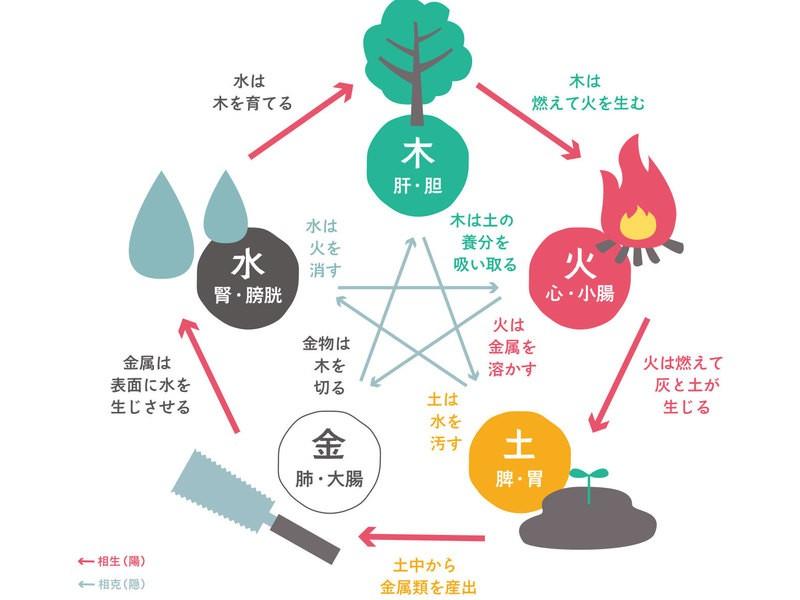 【オンライン講座】30分で覚える薬膳「五行」の画像