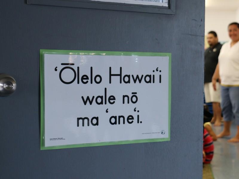 <初めてでも大丈夫>30分で学ぶハワイ語の発音の画像