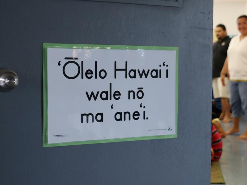 <初めてでも大丈夫>オンラインハワイ語文章講座の画像