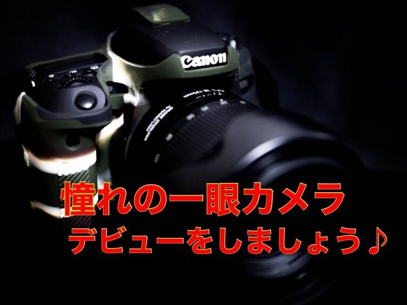 憧れの一眼カメラを始めたい♪カメラとレンズの選び方入門!の画像