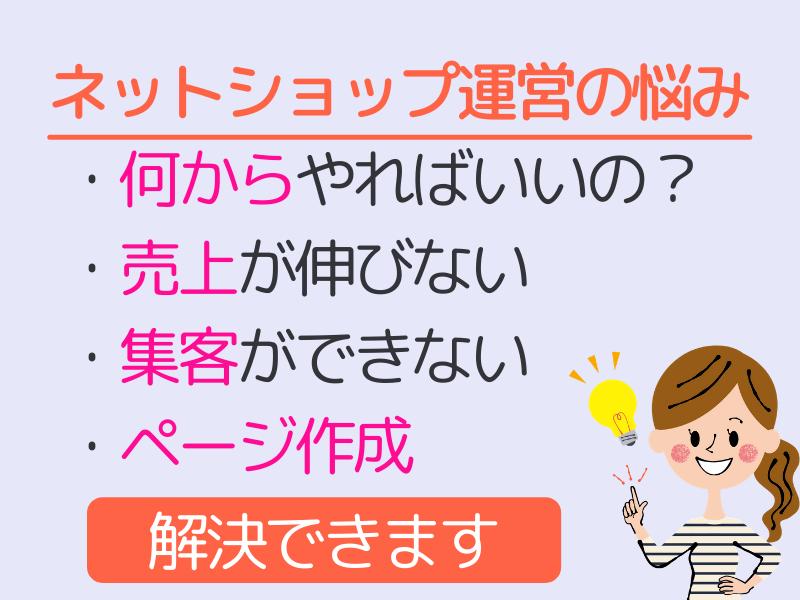 物販・EC・ネットショップお悩み解決・店舗改善マンツーマン講座の画像