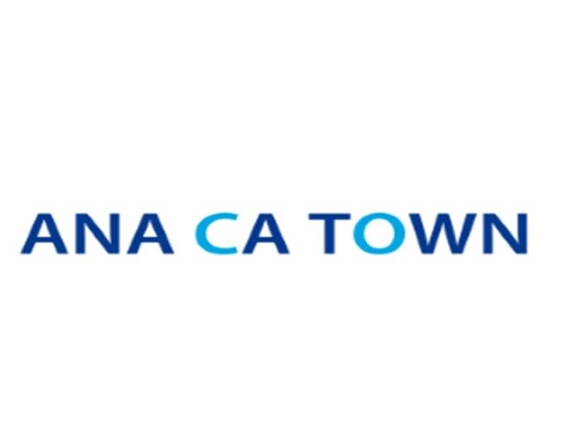 ANA海外CA(韓国)が教える韓国語基礎/マンツーマン・オンラインの画像