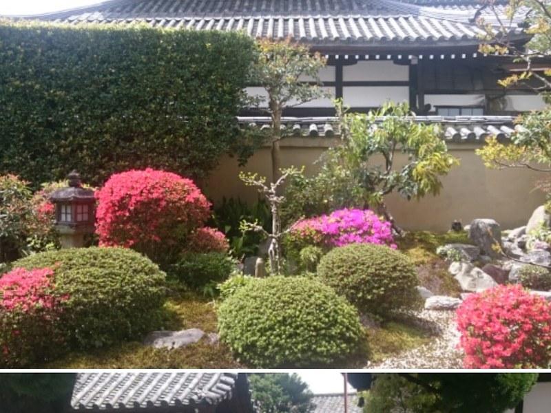 京都の伝統あるお寺でタイ式ヨガ・ルーシーダットンの画像