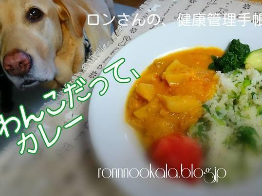【愛犬・愛猫ごはん料理講座】の画像