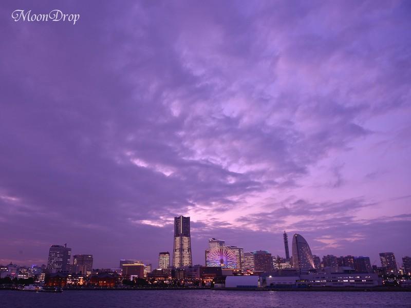 夜写ん歩レッスン☆横浜大桟橋から「みなとみらい」の夜景を撮ろう!の画像