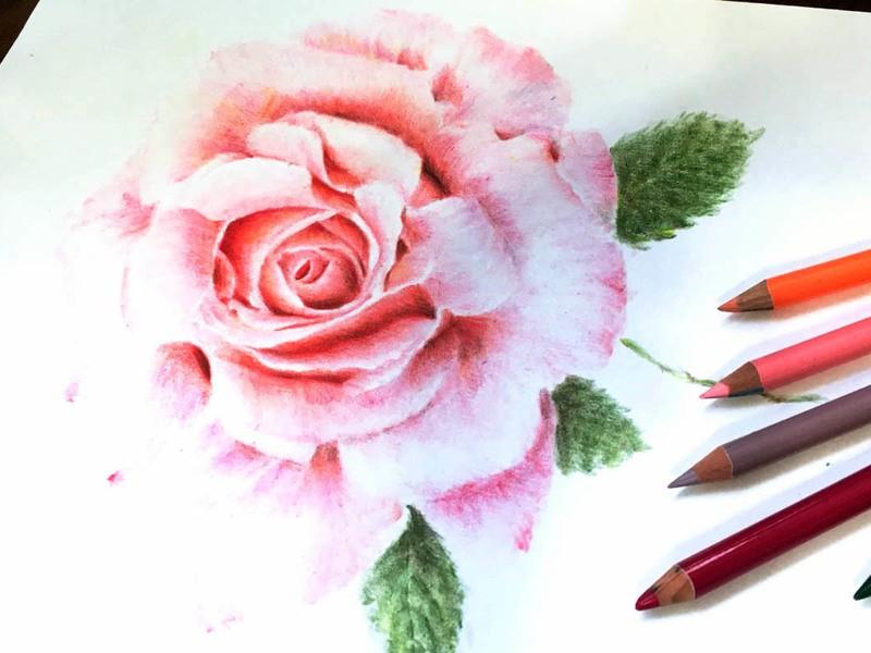 色えんぴつではじめる絵描き講座 色鉛筆Collegeの画像