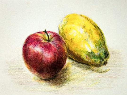 色えんぴつではじめる絵描き講座 色鉛筆College(通常版)の画像