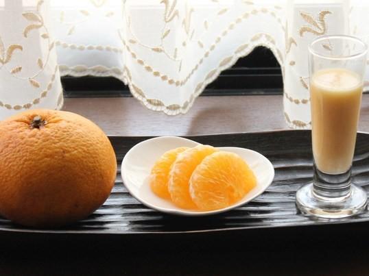 """発酵・酵素deスムージー """"夏"""" ~ご自宅で気軽に腸美人~の画像"""