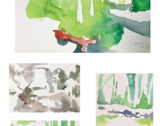 「林試の森で水彩スケッチ講座」の画像