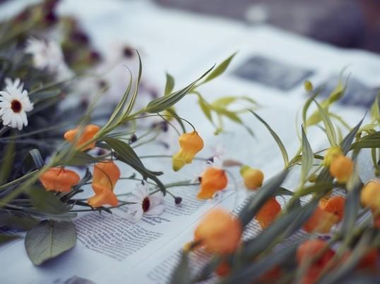 骨組みを使った秋のシュトラウス(花束)を作ってみよう!の画像