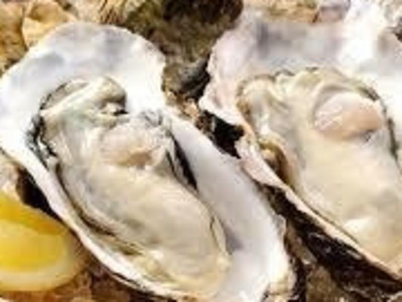 冬の味覚 !牡蠣づくし!牡蠣のパングラタンと牡蠣のオイル煮他!の画像