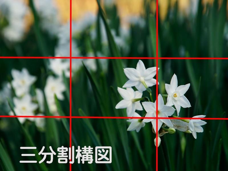 初心者写真教室【写真の絵作り=構図法=を学ぶ】の画像