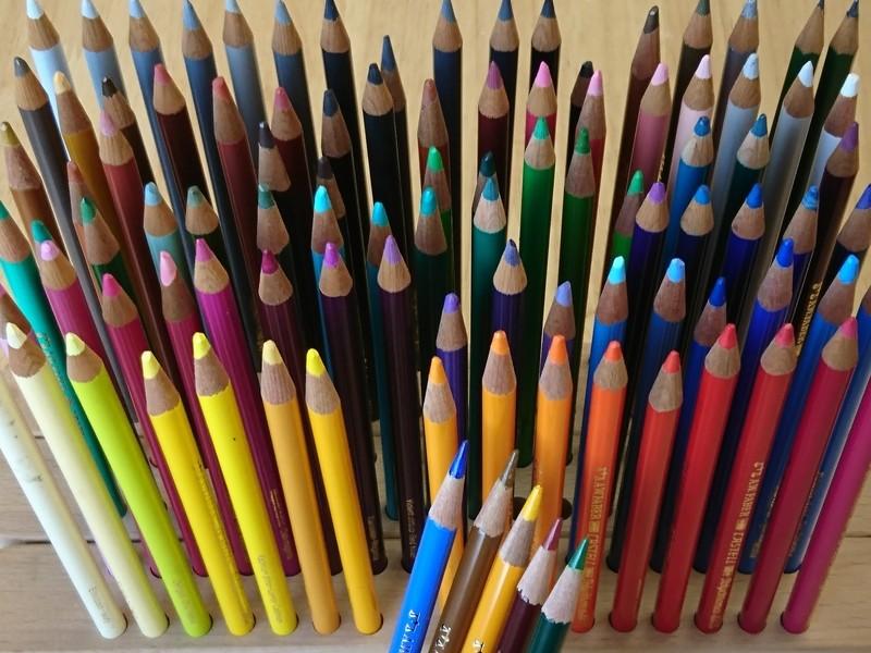 たった5本の色鉛筆が多彩な色を生む!画家が教える「大人の塗り絵」の画像