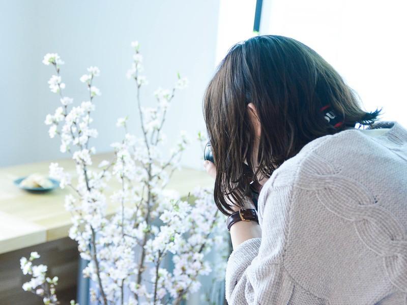 《お花見前に!》お花をテーマにしたカメラワークショップの画像
