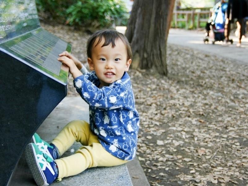 step1c カメラ操作の基本と子供撮影のコツの画像