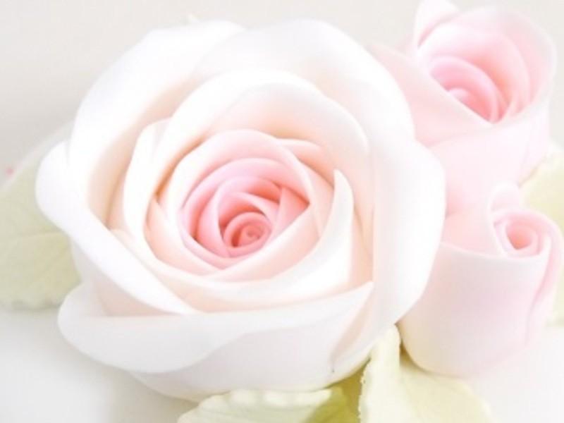 バラのケーキの画像