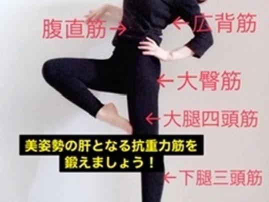 体幹トレーニングによる基礎作りから美ウォーキングをマスターしよう!の画像