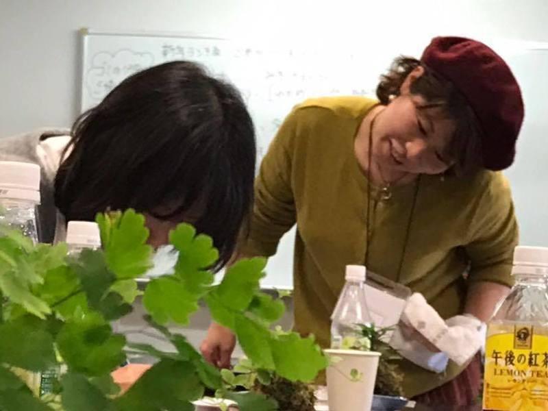 【不登校の子供を持つ母】対象!辛さを手放す奇跡の苔玉ワークショップの画像