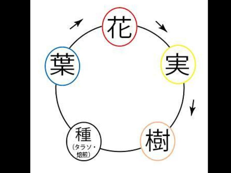 アロマde陰陽五行の画像