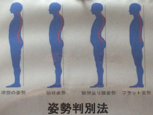 姿勢は骨盤だけでこんなに変わる!無意識で正しい姿勢をキープの画像