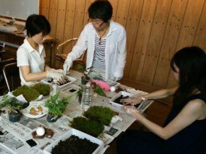 育て方のコツがわかる!失敗しない植物・鉢植・ガーデニングの栽培講座の画像
