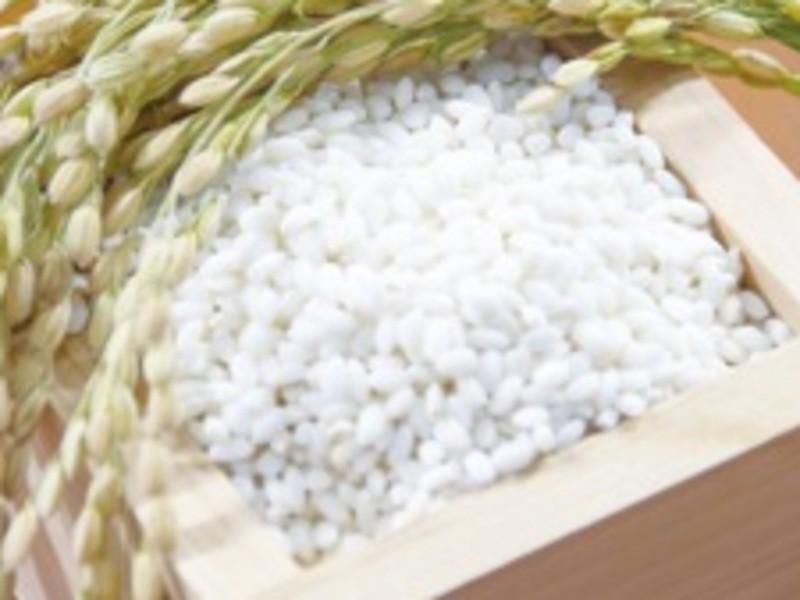 もち米から作る本格(塩)みりん作り教室!発酵・醸造調味料の画像