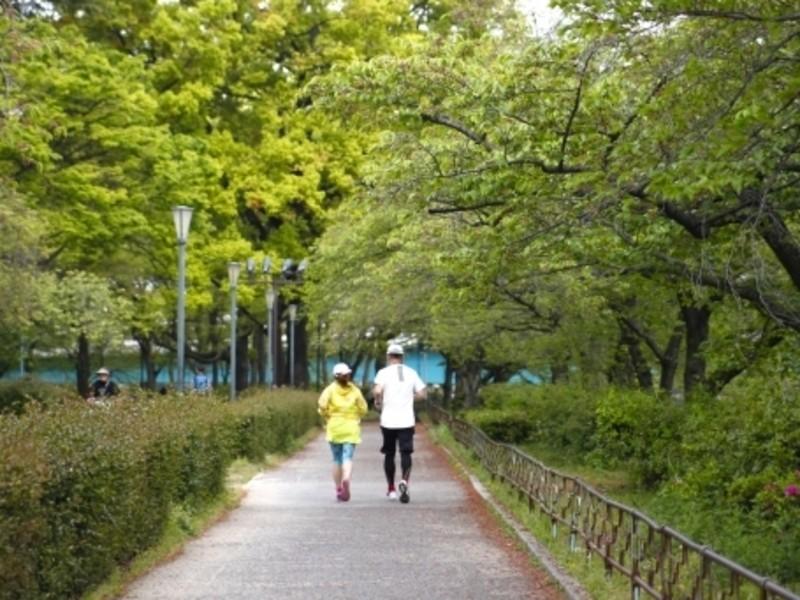 元箱根ランナーが教えるランニング教室〜(4回開催)~の画像