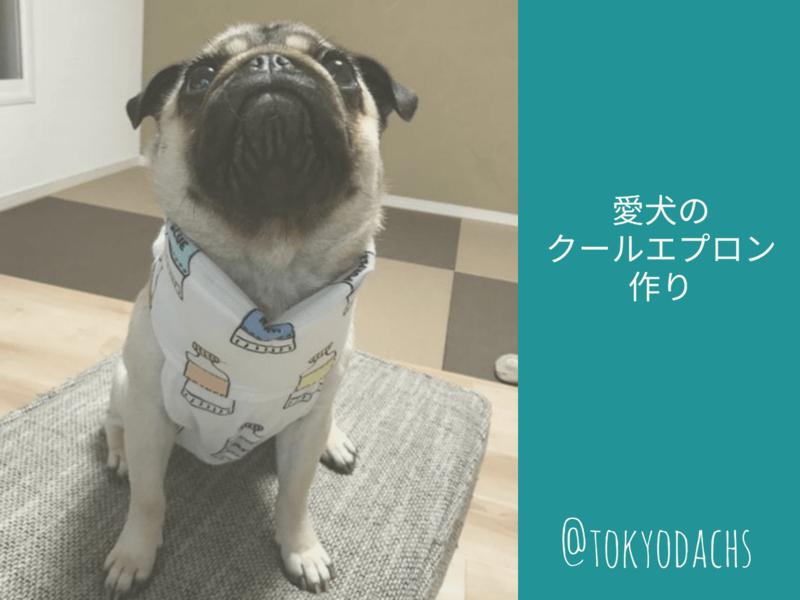 愛犬のクールエプロン作り ★動物愛護支援対象レッスンの画像