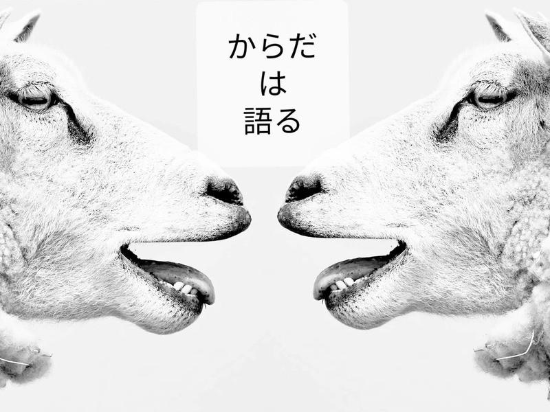 「からだの声」表現ワークショップの画像