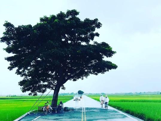 【個人レッスン】台北の歩き方 マンツーマン講座厳選オススメマップ付の画像