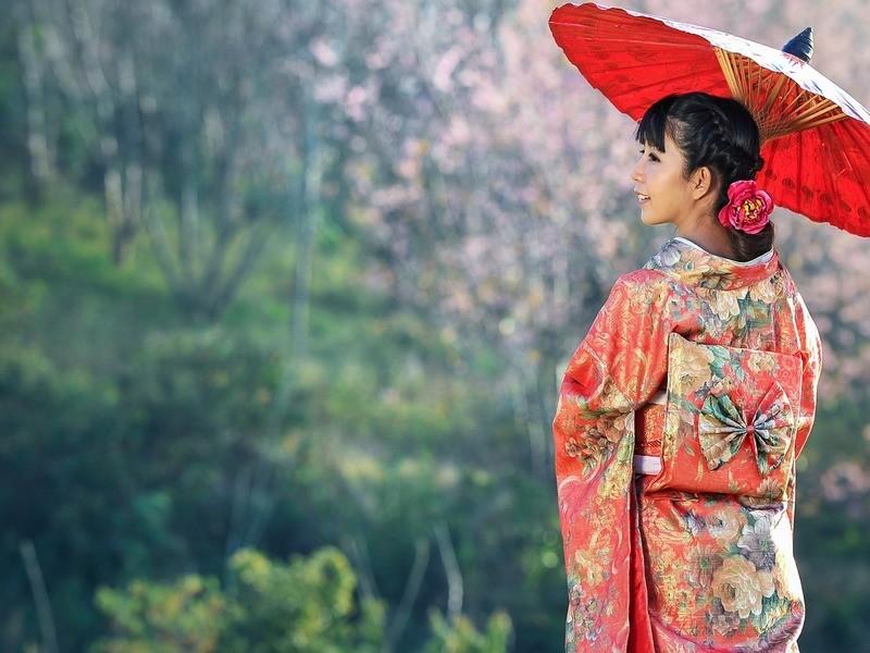 【手ぶらで日本舞踊】中級編:2回目以降の方向けの画像